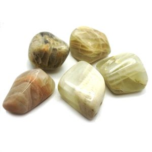 jurassic_jacks_moonstone_gemstone