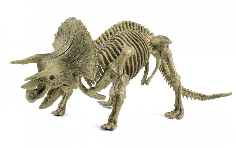 Dinosaurs Mdf Toy Box Childrens Storage Toys Games Books: Jurassic Jacks Fossil Shack