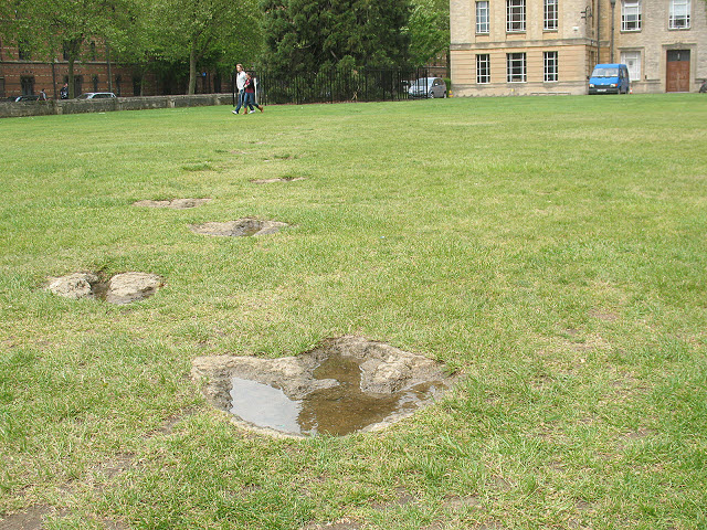 oxford_natural_history_museum_Dinosaur_footprints_