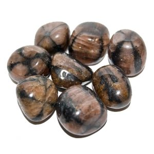 Chiastolite Tumbled Stone Crystal.