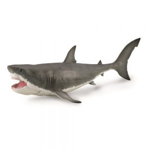 megalodon_shark_model