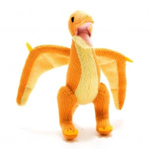 Pterodactyl Soft Toy Rattle