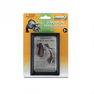 Tyrannosaurus Rex Tooth Replica