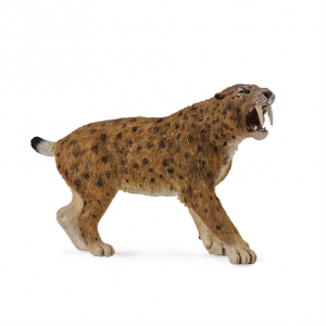 Smilodon Sabre Tooth Cat