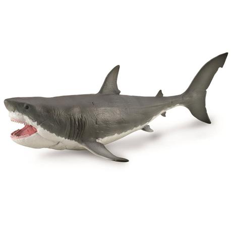 megaldon_shark_model