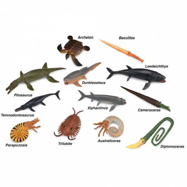 prehistoric_marine_animals_collection